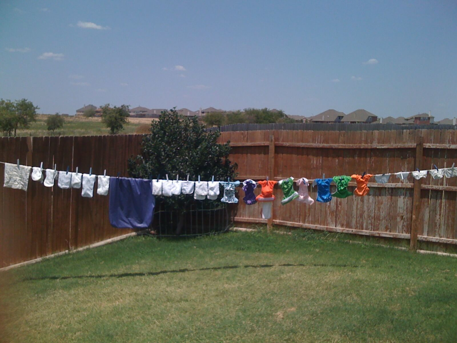Diapers drying in the sun
